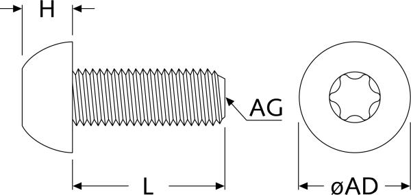 Extrem DIN EN ISO 7380 Torx Linsenkopfschrauben | A.R.T. Elektromechanik YZ97